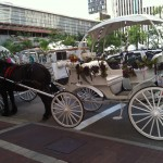 Horse and carriage in downtown Cincinnati