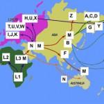 migrationpatterns