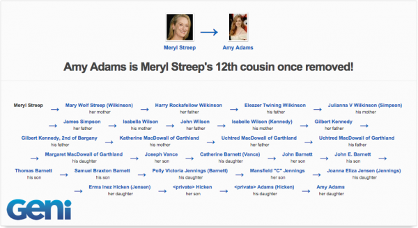 Amy Adams is related to Meryl Streep