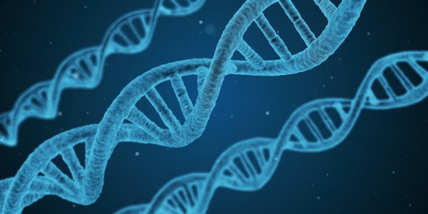 15 Interesting Facts About DNA