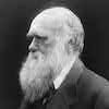Profile of the Day: Charles Darwin