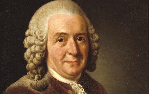 Profile of the Day: Carl Linnaeus