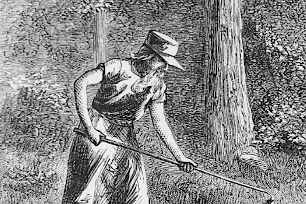 Profile of the Day: Johnny Appleseed