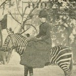 horsewomanprac00haye_0477 2 b